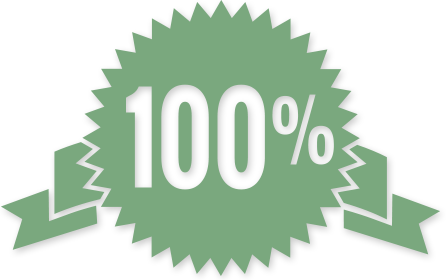 100 percent seal icon